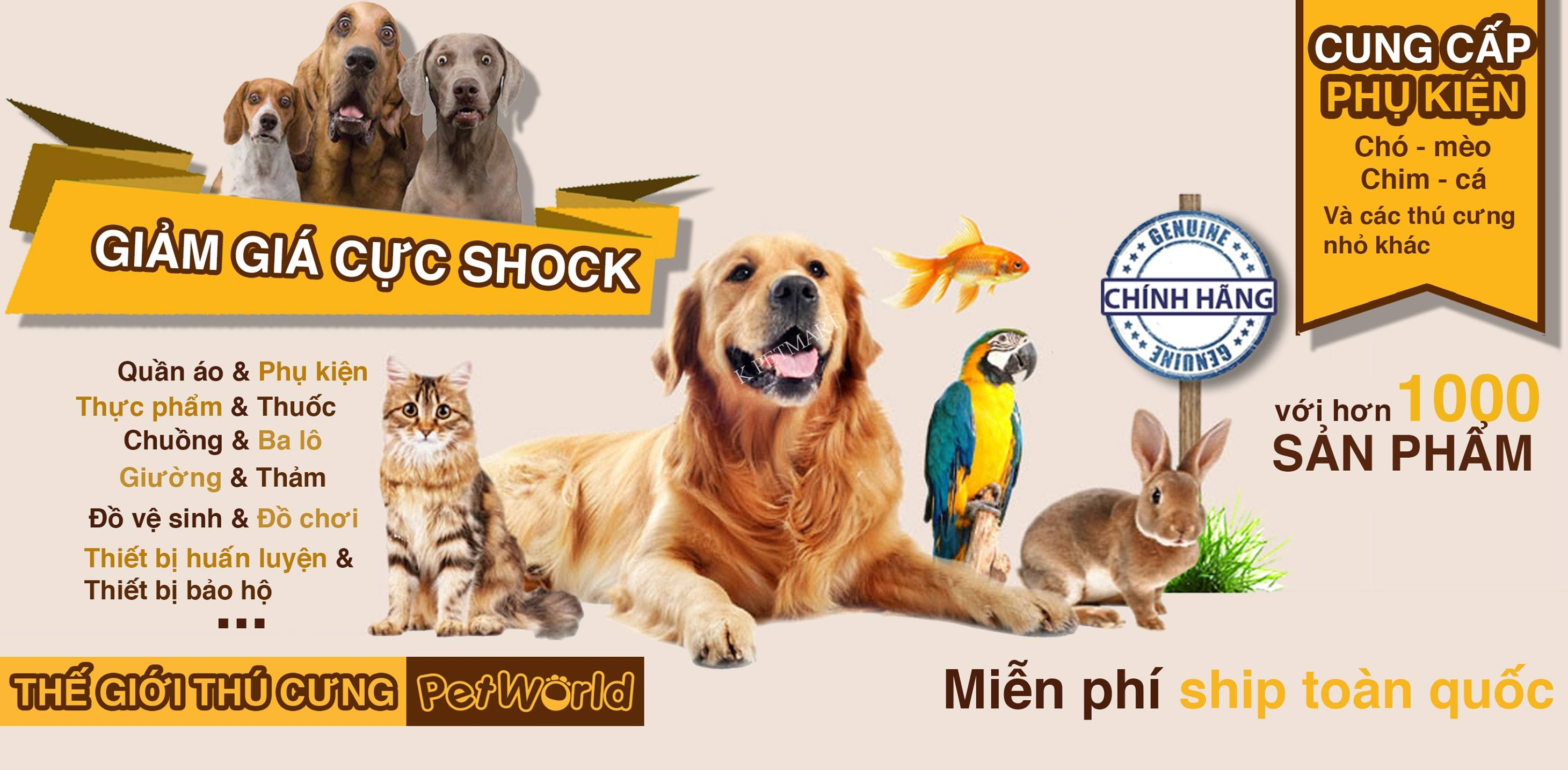 KPETMART- siêu thị thú cưng đà nẵng-bán hamster và thức ăn, đồ dùng hamster 37592135_2021226088189548_9088413405521379328_o_2